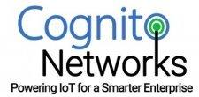 Cognito Networks